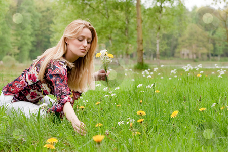 Collecting flowers stock photo, Young blond girl collecting flowers in the grass by Frenk and Danielle Kaufmann
