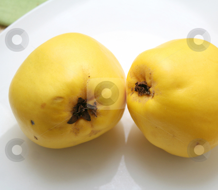Quinces stock photo,  by Yvonne Bogdanski