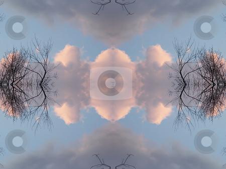 Nature's Mind - Background Pattern stock photo, Nature's Mind - Background Pattern. by Dazz Lee Photography
