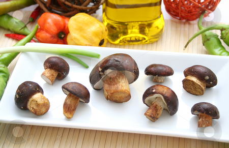 Fresh mushrooms stock photo,  by Yvonne Bogdanski
