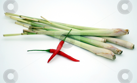 Lemon grass stock photo,  by Yvonne Bogdanski