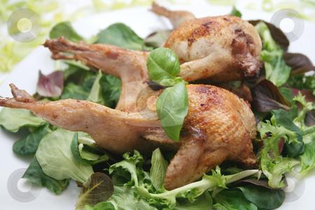 Fresh quails stock photo,  by Yvonne Bogdanski