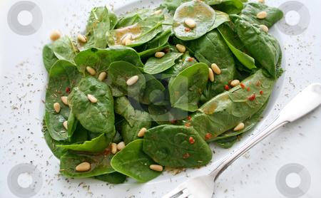 Salad of spinach stock photo,  by Yvonne Bogdanski