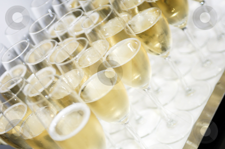 Tray with champagne glasses stock photo, Glasses with champagne on a tray by Corepics VOF