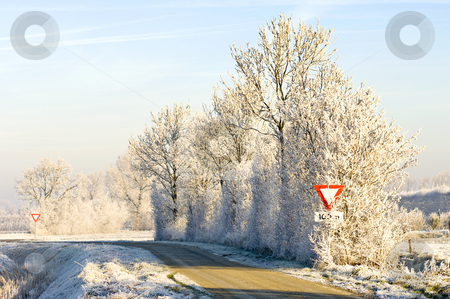 Winter in Rural Holland stock photo, A rural road with hoar frosted trees, in the bright, warming sunlight by Corepics VOF
