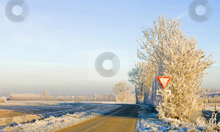 Winter road stock photo, Approaching a rural intersection on a beautiful winter morning with hoarfrost covered trees by Corepics VOF