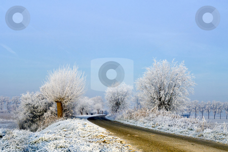 Dutch Dyke stock photo, A rural road on a dutch dike, just before the break of dawn on a winter morning by Corepics VOF