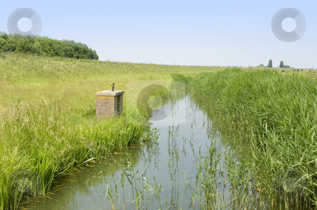 Dutch Polder stock photo, A typical Dutch Polder with a small, muddy, ditch and grazing cows on a nice summer afternoon by Corepics VOF