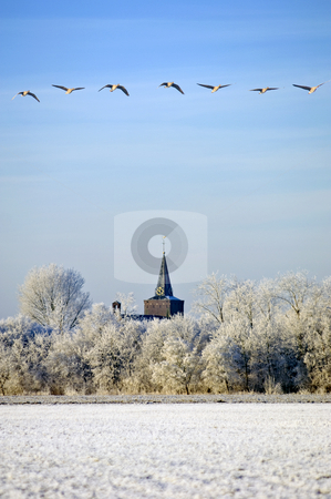 Migrating Greylag Geese stock photo, A flight of migrating greylag geese over a typical Dutch winter schene in Zeeland, the Netherlands by Corepics VOF