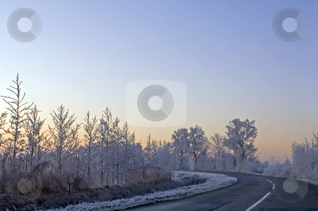 Winter morning stock photo, The frosted trees and bushes along a country road in Zeeland, the Netherlands. Early morning. by Corepics VOF