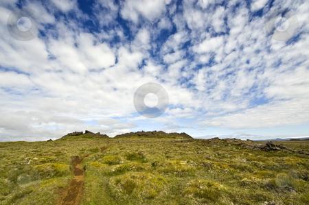 Kjolur Landscape stock photo, The moss covered lava fields of an ancient shield vulcano in the Kjolur Landscape near Hveravellir, Iceland by Corepics VOF