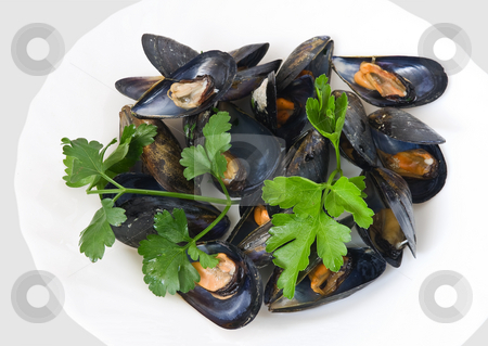 Mussels with parsley stock photo, Dish of boiled mussel with parsley, oil and lemon by ANTONIO SCARPI