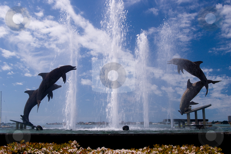 Fountain at Sarasota Bay Park stock photo, Fountain with Dauphins at Sarasota Bay Park by Steve Carroll
