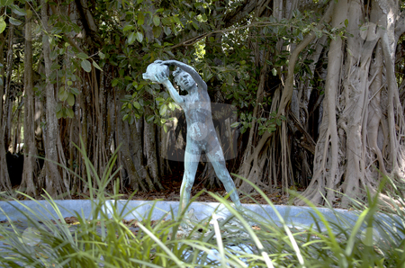 Old fountain and Banyon trees stock photo, An old fountain in disrepair at the Ringling Mansion in Bradenton, Florida. by Steve Carroll