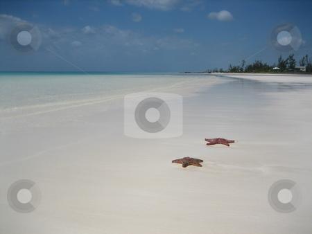 Beach stock photo, Bahamas, beach, holiday, travel by Fabrice Teboul