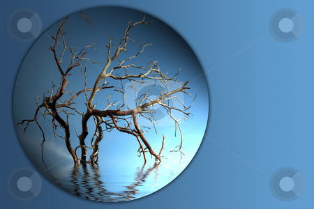 Bare tree branch button 2 stock photo, Bare tree branch button on blue background by Stacy Barnett
