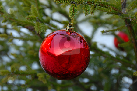 Christmas ball stock photo, Christmas red ball on green new year tree by Julija Sapic