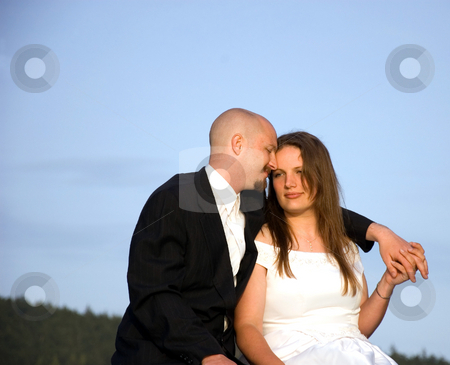 Bridge and Groom Sitting and Holding Hands stock photo, This young bride and groom are sitting and holding hands while snuggling against a beautiful blue sky. by Valerie Garner
