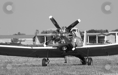 Old plane stock photo, Old plane still in a field, black and white by Fabio Alcini