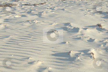 Beach  stock photo, Sand beach landscape by Laura Smith