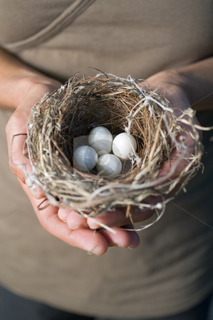 Hands holding nest with eggs stock photo, Nest with eggs in woman's hands by Noam Armonn