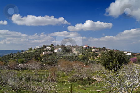 Jewish Village in the Galilee Israel stock photo, The Jewish Village of Michmanim in the Galilee Israel by Noam Armonn