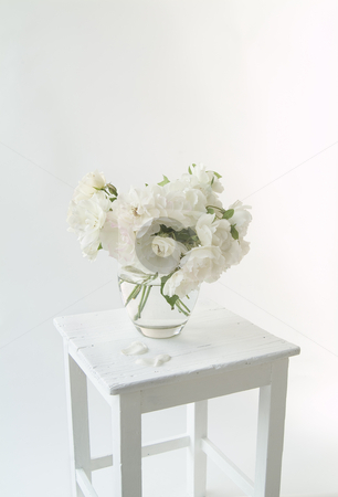 Bouquet of Iceberg roses stock photo, Highkey Image of Bouquet of Iceberg roses on a white painted wooden stool. by Noam Armonn