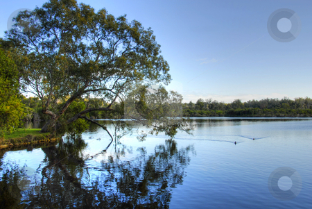 Lake Landscape stock photo, Landscape National Park Australia by Laura Smith