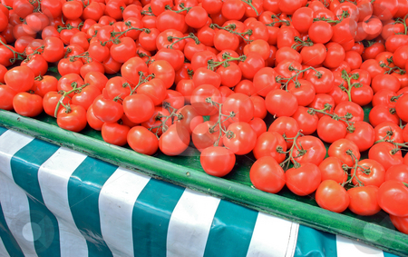 Fresh Tomatoes stock photo, Fresh ripe tomatoes on a market stall by Robert Ford