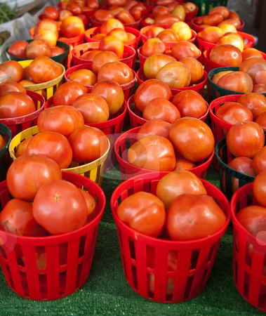 Baskets of Ripe Tomatoes stock photo, Baskets of ripe tomatoes at local Farmer's Market by Steve Carroll