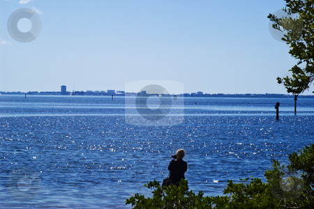 Sarasota Bay stock photo, Lady taking picture of Sarasota skline across Sarasota Bay by Steve Carroll