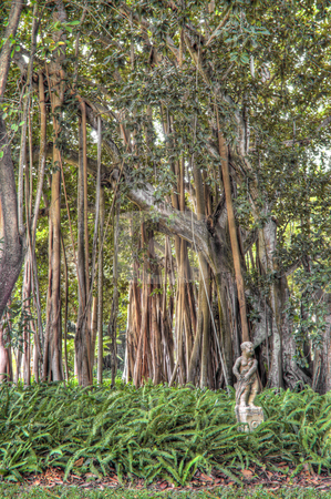 Concrete Statue in Banyan Tree Garden stock photo, Concrete Statue in Banyan Tree Garden at Ringling Mansion in Sarasota, Florida. (The Banyan trees were a gift from Thomas Edison to John and Mable Ringling during the 1920's) by Steve Carroll