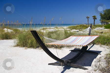 Hammock on the Beach stock photo, Inviting Hammock on Bradenton Beach by Steve Carroll
