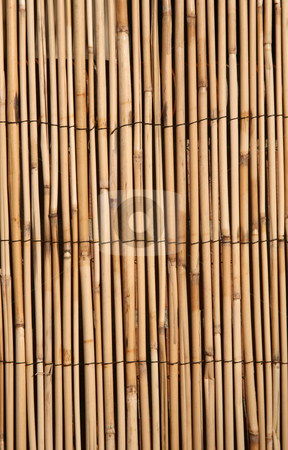 Bamboo texture background stock photo, Rush or bamboo texture, digital image by Stacy Barnett