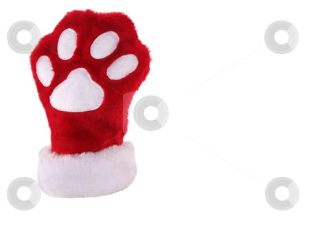 Christmas paw stocking 2 stock photo, Red and white christmas stocking with paw print isolated on white background by Stacy Barnett