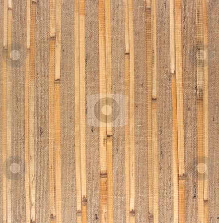 Bamboo 17 stock photo, Bamboo texture background material isolated on white by Stacy Barnett