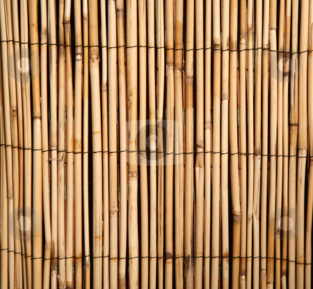 Bamboo pattern background stock photo, Rush or bamboo texture background, digital image by Stacy Barnett