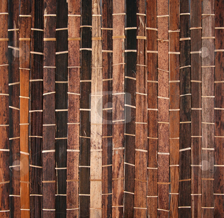 Bamboo 14 stock photo, Bamboo texture background bound together in a pattern by Stacy Barnett
