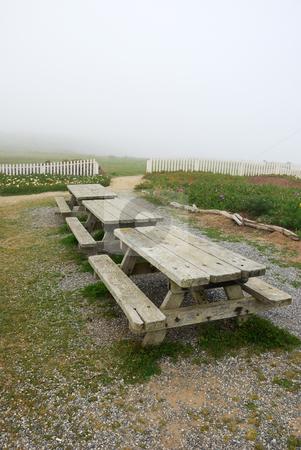 Picnic Tables on California Coast stock photo, Picnic tables on California coast on a foggy day. by Denis Radovanovic