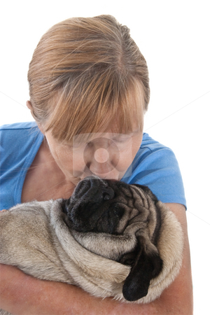 Mature Lady Holding A Pug Dog stock photo, Mature Lady Cuddling a Pug Dog, Isolated on a White Background by Steve Carroll