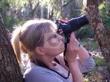 Mature Lady Nature Photographer stock photo, Mature lady photographing Florida nature & wildlife by Steve Carroll
