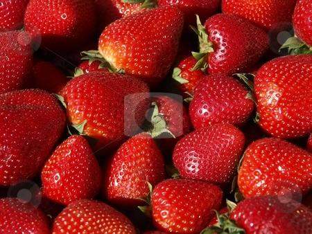 Strawberries stock photo, Fresh strawberries by Lars Kastilan