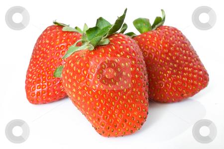 Three strawberries stock photo, Closeup of three ripe strawberries isolated on white background by ANTONIO SCARPI