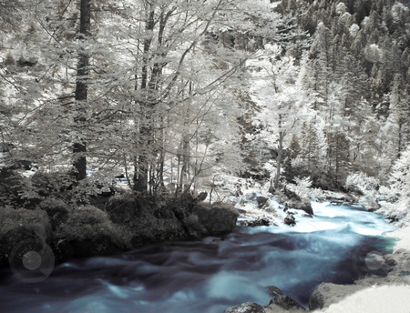 Infrared landscape stock photo, Infrared picture of a beautiful forest with river flowing by Laurent Dambies