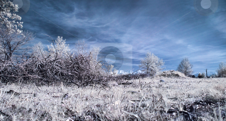 Infrared landscape stock photo, Panoramic infrared picture of a meadow with mountain in the background by Laurent Dambies