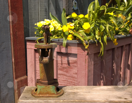 Antique Hand Pump Next to Flowers stock photo, This antique old fashioned hand water pump is located next to a basket of bright yellow pansies. by Valerie Garner