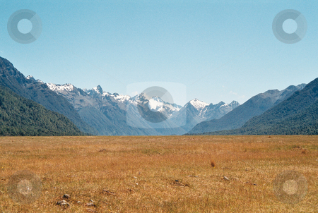 Milford Field stock photo, Scenic view of a field and snowcapped mountains on the road to Milford Sound, New Zealand by Daniel Rosner