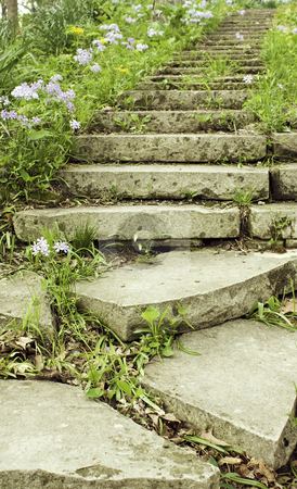 Stone stairway on a garden path vertical stock photo, Stone stairway lined with flowering phlox on a shady garden path in  vertical orientation by Stephen Goodwin