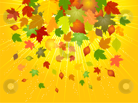 Autumn leaves stock vector clipart, Background of falling Autumn leaves by Kirsty Pargeter