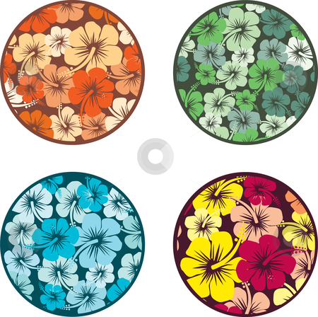 Hibiscus flowers stock vector clipart, Backgrounds with hibiscus flowers by Kirsty Pargeter